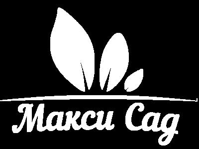 Макси Сад